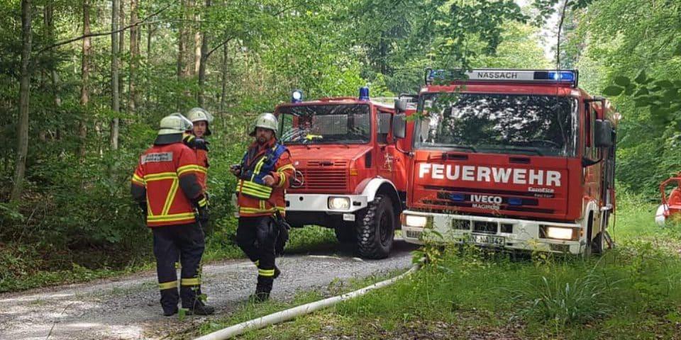 Waldbrandübung   Freiwillige Feuerwehr Spiegelberg