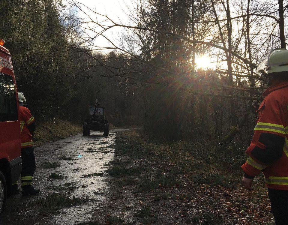 Sturmschaden Feuerwehr Spiegelberg
