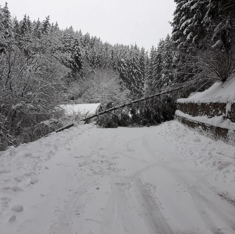 Feuerwehr Spiegelberg Schnee1